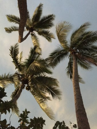 Bilde fra Toberua Island
