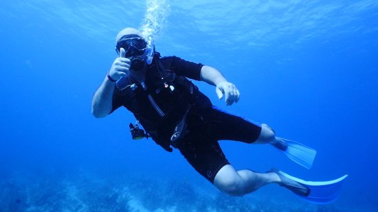 Pro Dive International Foto