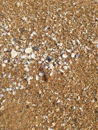 Club Med Cherating Beach: photo3.jpg