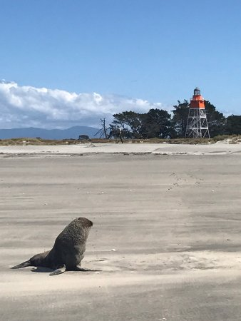 Collingwood, Νέα Ζηλανδία: The lighthouse keeper