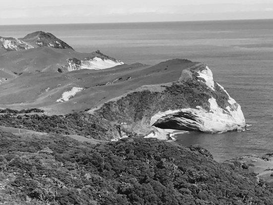 Collingwood, Νέα Ζηλανδία: Views from Pillar Point Lighthouse