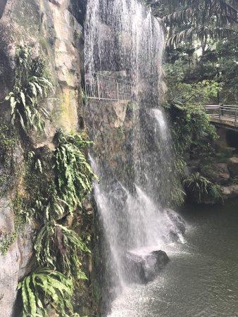 Kuala Lumpur Bird Park: photo4.jpg