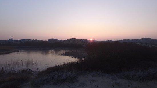 Overveen, Ολλανδία: Zonopkomst vanaf Duinpieperpad