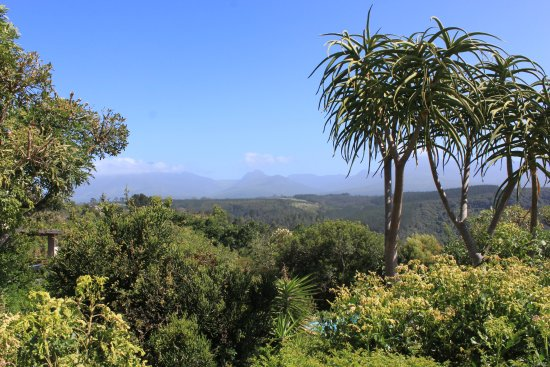 Paradise Cove Guesthouse: part of the gardens