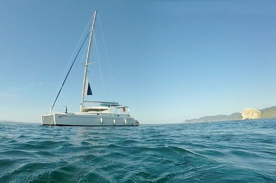 Sea Shell Catamaran & Charters