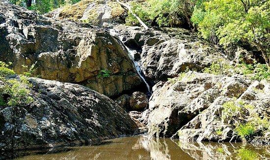 Youngs Creek Falls