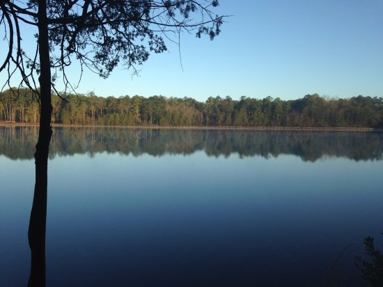 Cheraw, Carolina del Sud: Lake Juniper