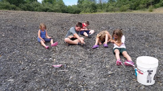 Danville, Pensilvania: Montour Preserve Fossil Pit