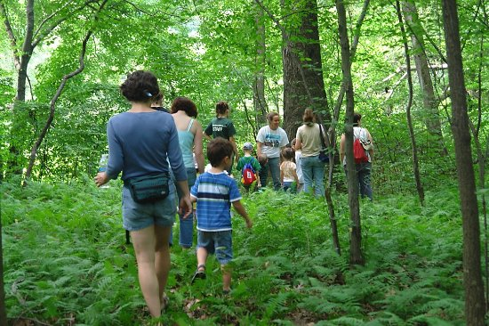 Morrisville, Pensilvania: Exploring the woodlands at Snipes Farm