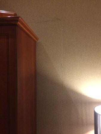 Malone Lodge Hotel & Apartments: photo0.jpg