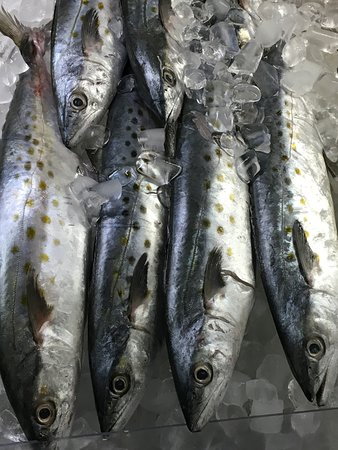 New Bedford, MA: Bright Eyed Sea Mackerel on ice at DeMello's Market Photo by JEI
