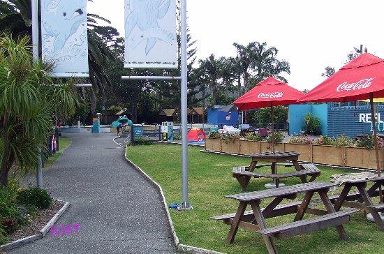 Waiwera, New Zealand: Picnic Spot
