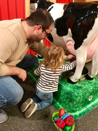 Youngstown, OH: learning about animals