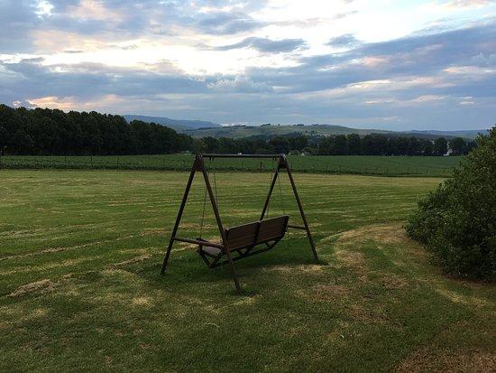 Ardmore Guest Farm: photo3.jpg