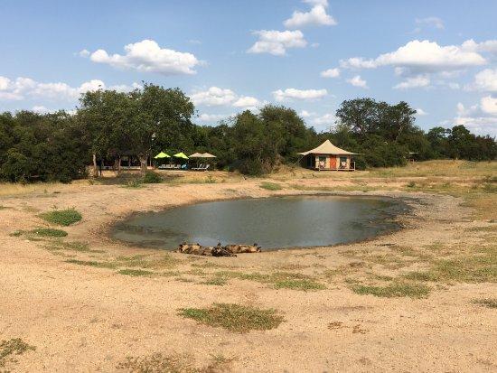 Tangala Safari Camp: photo2.jpg