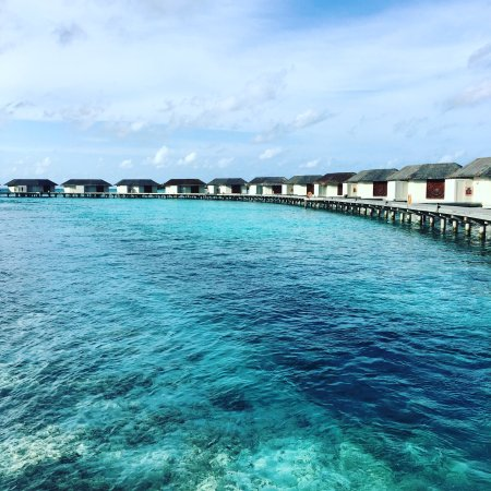 Farukolhufushi Island: Honeymoon xx