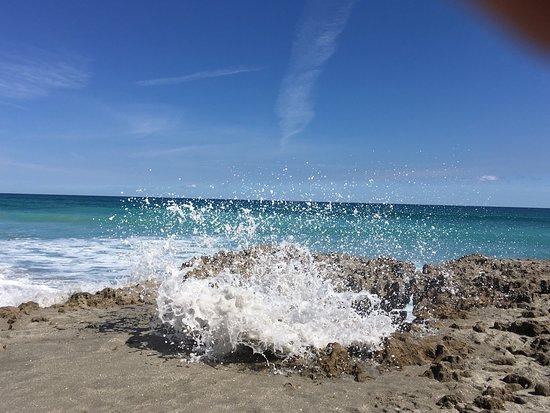 Hobe Sound, Flórida: photo0.jpg