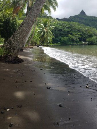 First Stop At The Black Sand Beach Picture Of Atv Moorea