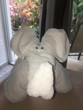 Posada Luna del Sur: Adorable towel animals were a cheerful touch