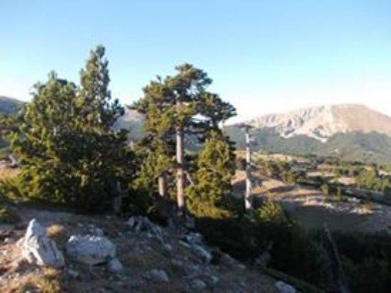 Terranova di Pollino, Italie : getlstd_property_photo