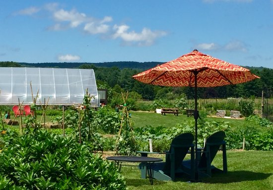 Warrenton, VA: Organic Garden