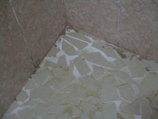 Hotel Posada Del Mar: Mold in the shower