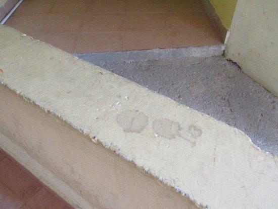 Hotel Posada Del Mar: Dirty walls in hallways
