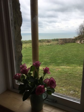 Gunwalloe, UK: Halzephron House, Cabin and B&B