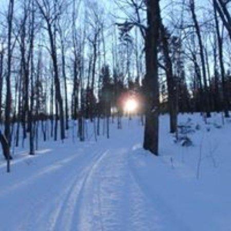 La Clé des Bois: Piste de ski de fond