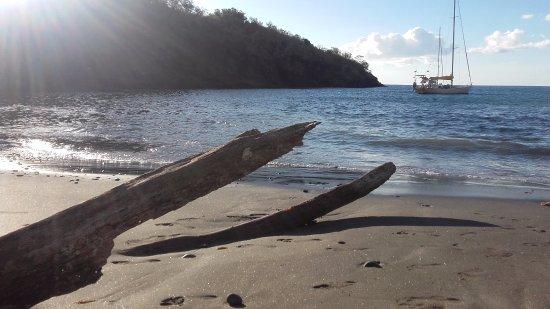 Les Anses d'Arlet, Martinique: Plage Anse Noire