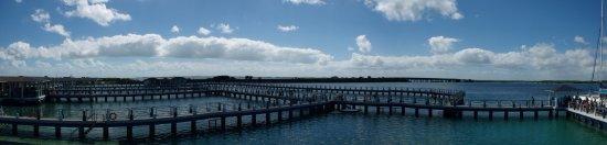 Delfinario en Cayo Santa Maria : Dolphins Enclosure