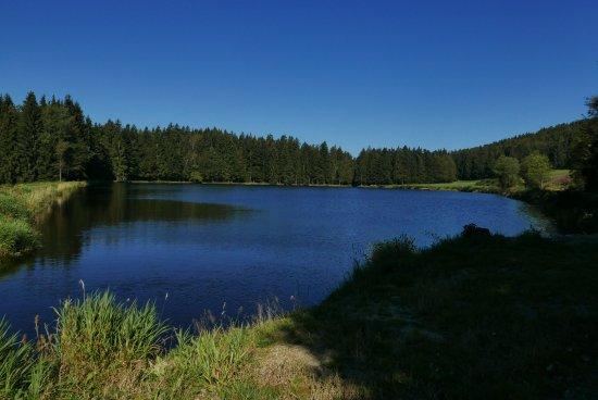 Spiegelau, Γερμανία: Halbzeit