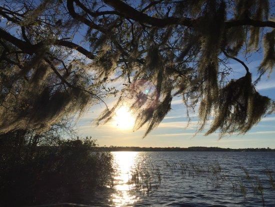 Palm Harbor, FL: photo7.jpg