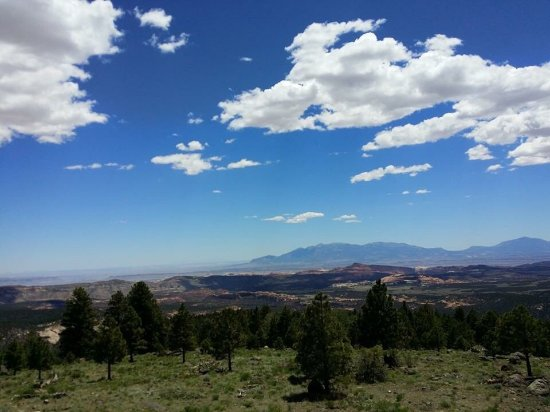 Cedar City, UT: Dixie National Forest