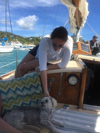 Morningstar Sailing and Power Charters Image