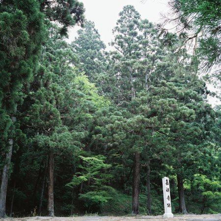 Motsu-ji Temple: empty spot where one of the temple buildings once stood