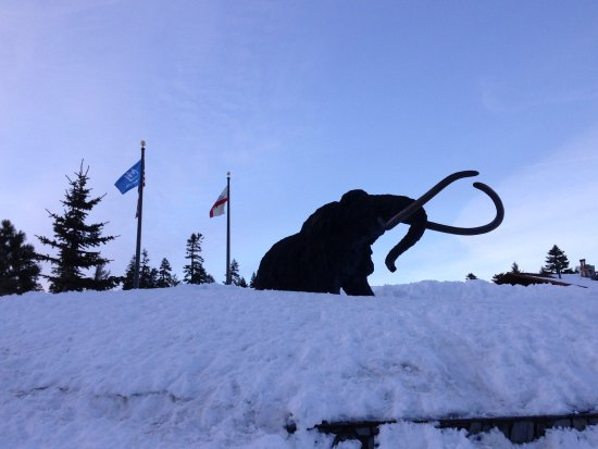 Mammoth Mountain: Mammoth mascot