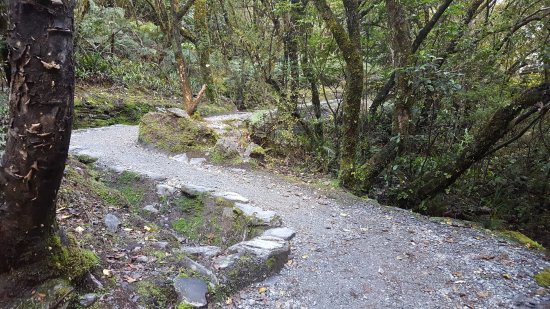 Franz Josef, Νέα Ζηλανδία: Middle earth type walks