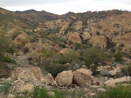 Tortilla Flat, AZ: photo2.jpg