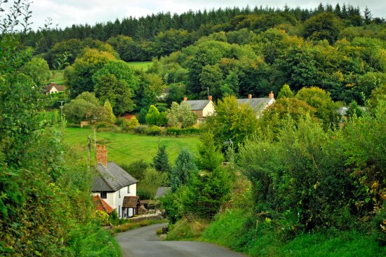Dulverton, UK: Local scenery