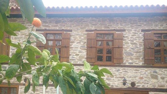 Izmir Province, Turkey: DSC_0012_1_large.jpg