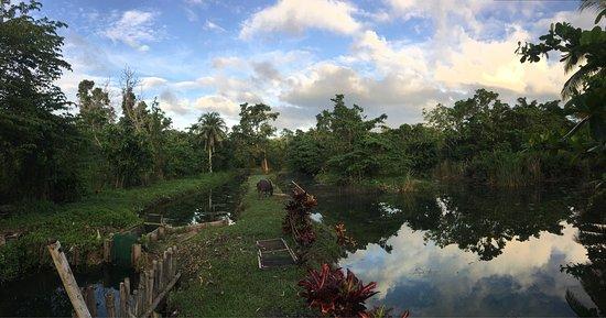 Loboc River Resort: photo1.jpg