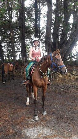 Horse Trek'n: received_10154348812902215_large.jpg