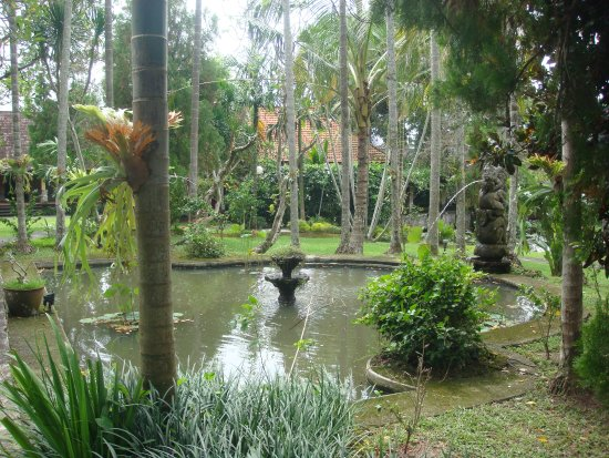 Museum Puri Lukisan: Tranquil water feature of the main garden