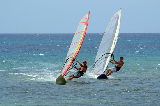 Havana Windsurf