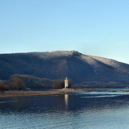 Bingen am Rhein, Germania: Blick vom Rheinufer aus