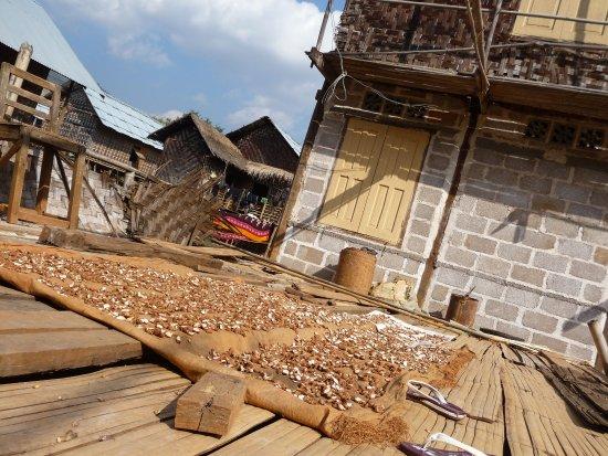 Kalaw, Myanmar: Village day 3