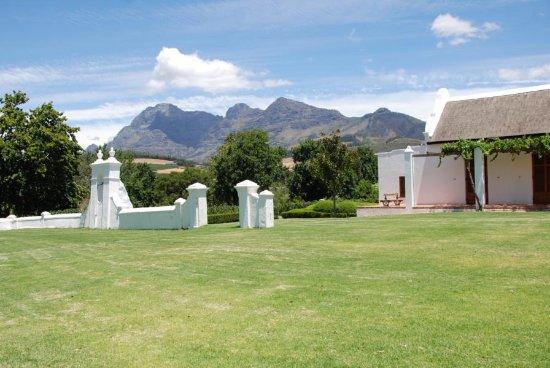 Западно-Капская провинция, Южная Африка: Babylonstoren