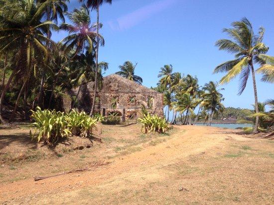 Iles du Salut, French Guiana: ile royale