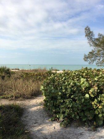 Nokomis, FL: photo1.jpg